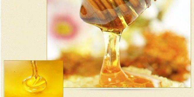 raw white honey