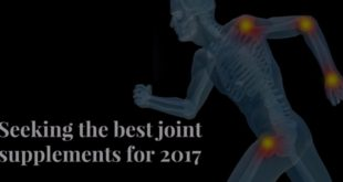 Seeking the best joint supplements for 2017