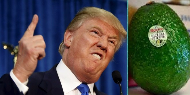 Trump's beef with Mexico threatens avocados supply