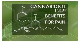 cannabidiol cbd benefits for pain