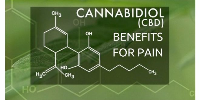 cannabidiol cbd benefits for pain