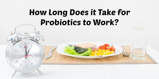 How long does it take for probiotics to work
